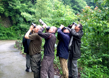 Birding in Eastern China.jpg